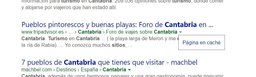 Buscar en la caché de Bing